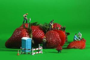 byggnadsarbetare i konceptuella matbilder med jordgubbar foto