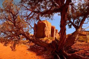 inramad landskapsbild av monument valler arizona foto