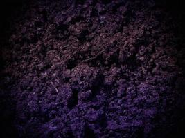 mörk jordstruktur i trädgården foto