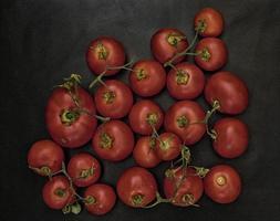 tomat utomhus i trädgården foto
