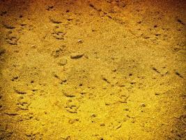 konsistens av mörk sand vid havet foto