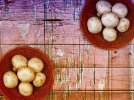 svamp på träbakgrunden foto