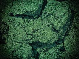 grönt vatten mark konsistens foto