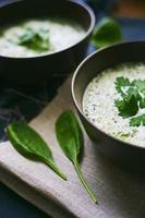 stor utsikt över soppan med spenat och vitlök foto