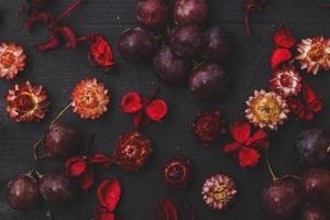 torkade blommor foto