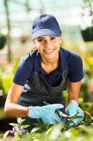 ung kvinnlig blomsterhandlare som arbetar i plantskola foto