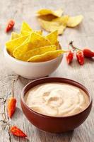 dopp och nachos foto