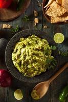 hemlagad färsk guacamole och chips