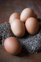 ägg på träbakgrunder