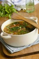 italiensk soppa foto