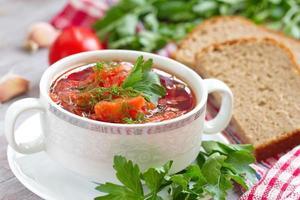 traditionell ryska ukrainska grönsaksborscht soppa foto