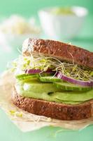 hälsosam rågsmörgås med avokado gurka alfalfa groddar foto