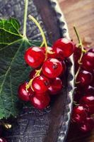 röd vinbär svamp kaka. tallrik med blandade sommarbär, hallon. foto