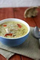 kyckling soppa med nudlar vertikalt foto