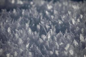 vintermönster # 2 foto
