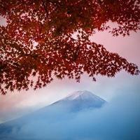 montera fuji vid kawakuchiko sjön foto
