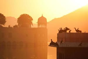 soluppgång på jalmahal palats, jaipur foto