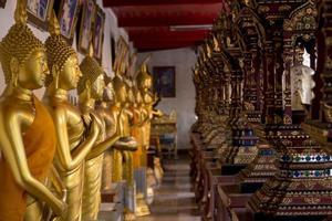 gyllene Buddhastatyer i Thailand foto