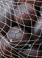 fotbollar och rugbybollar foto