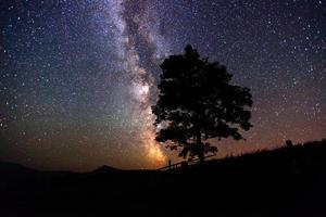 stjärnbeströdd himmel foto