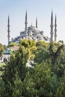 blå moské, istanbul kalkon foto