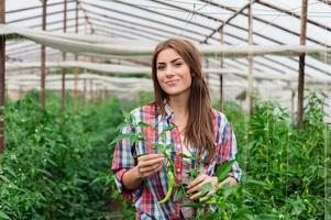 kvinnlig arbetare i växthus.
