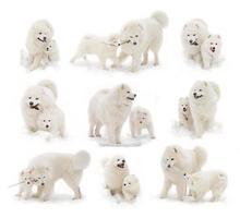 samojed hund och valp foto