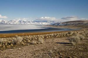 antilopö, salt sjöstad, Utah foto