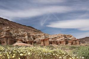antilopdal vallmo reservat, Kalifornien, USA foto