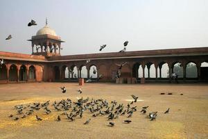 jama masjid foto