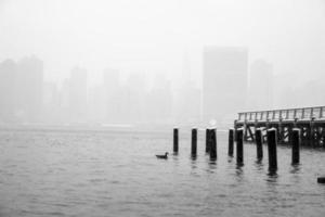 vinter dimma foto