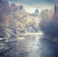 vackert vinterlandskap i stadsparken foto