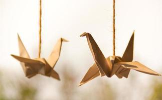 origami svanar (papper) foto