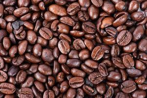 rostade bruna kaffebönor foto
