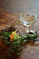 cocktail och botanik foto