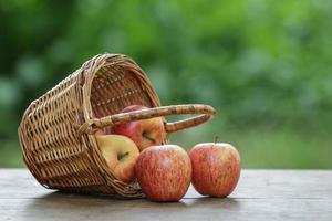 gala äpplen i en flätad korg foto