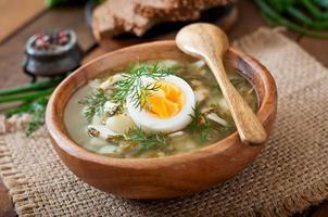 grön soppa av sorrel foto