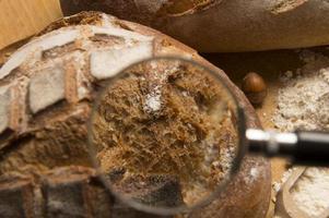 bröd-närbild foto