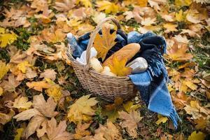 höst picknick i parken foto