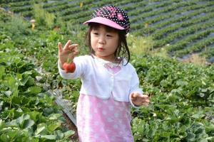 baby pick jordgubbe foto