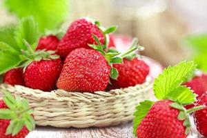jordgubb