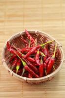 röd paprika foto