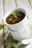 aubergine soppa foto
