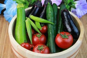 vegetabiliska