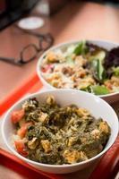 spenat och ost curry skål och en vegetarisk sallad foto