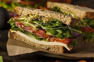 hälsosam vegetarisk veggiesmörgås