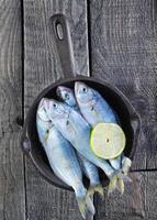 rå fisk foto