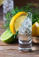 gin med citron foto