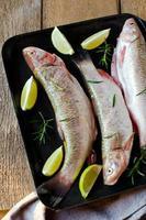 färsk fisk med citron och rosmarin foto