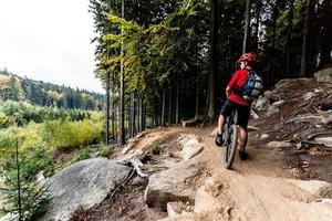 mountainbiker som cyklar i höstskogsleden foto
